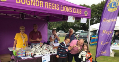Bignor Lions at the Climping Dog Sanctuary